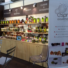 SIRHA 2015: le salon mondial des métiers de bouche || SIRHA 2015: The world hospitality and Food service Event